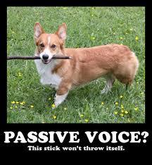 corgi stick